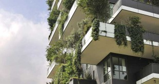 Vertical Forest consists of two landscaped towers incorporating diverse vegetation that includes a variety of trees, groundcover plants and shrubs