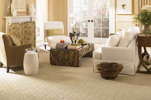 SmartStrand with DuPont Sorona is a line of residential flooring carpet and tiles made with renewably sourced polymers derived from corn sugar