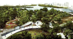 Sameep Padora, City Collaborative, Maharashtra Nature Park, bridge, Mithi river, Dharavi.