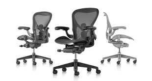 Herman Miller, Aeron chair, Don Chadwick, spinal support.