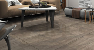 Antica Ceramica, European Porcelain Tiles, Vitrified tiles, Mr. Rahul Bhugra, Imperial Collection.